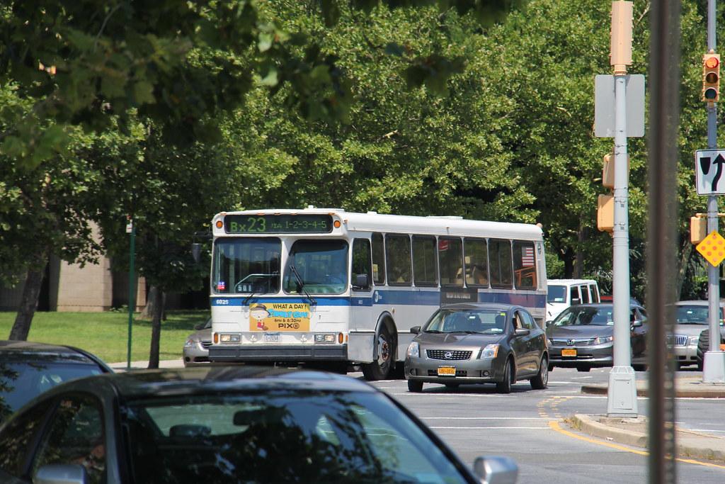 New York Travel Bus V S Express Bus