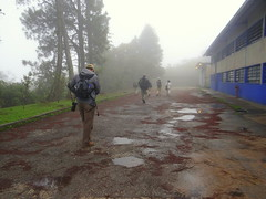 Pajareros en la bruma (barloventomagico) Tags: southamerica rainforest venezuela marcaribe caribbeansea ivic suramérica estadomiranda northernsouthamerica selvanublada nortedesuramérica institutovenezolanodeinvestigacionescientíficas km11carreterapanamericana