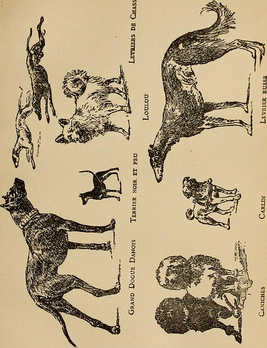 """Image from page 98 of """"French language and conversation"""" (1891)"""