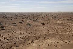 Aousserd (tanjaseidemann) Tags: polisario sadr westernsahara rasd saharaoccidental westsahara saharaoccidentale saraocidental vstsahara vestsahara lnsisahara vestursahara zpadnsahara