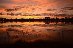 Sunrise minus 30 (phunnyfotos) Tags: sky cloud lake reflection weather clouds sunrise reflections nikon skies australia victoria vic hopetoun mallee d5100 lakelascelles nikond5100 phunnyfotos