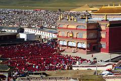 The morning recital at Yarchen Gar, Tibet 2013 (reurinkjan) Tags: dzogchen 2013 yachengar བོད་ལྗོངས། ©janreurink tibetanplateauབོད་མཐོ་སྒང་bötogang tibetབོད buddhistསངས་རྒྱས་ཆོས་ལུགས་པ nunneryཨ་ནི་དགོན་པ་anidgonpa monkགྲྭ་བ།grwaba buddhismསངས་རྒྱས་ཆོས་ལུགས།sangsrgyaschoslugs yarchengar greatertibetབོད་ཆེན་པོböchenpo tibetannationalitytibetansབོད་རིགས།bodrigs tibetannationtibetanpeopleབོད་ཀྱི་མི་བརྒྱུདbökyimigyü nunཇོ་མོ།ani sisterhoodཨ་ནིའི་ཚོགས་པanitsokpa khamཁམས།easterntibet nyingmaredhatsectརྙིང་མrnyingma ༢༠༡༣ khamཁམས་བོད khamsbodkhamwö pelyülདཔལ་ཡུལ།county nyingmapahermitage yarchengonpaཡར་ཆེན་དགོན་པ་ yarchengarཡར་ཆེན་སྒར་ dzinchuཛིན་ཆུ་ lamaachukrinpoche yellegar rinchenlingpa yachengönཡ་ཆེན་དགོན། yachengarཡ་ཆེན་དཀར་། stupaམཆོད་རྟེན༏mchodrtenchorten yarchengön