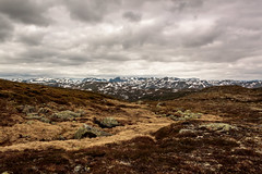Norwegian highlands (mari.tynes) Tags: norway haukeli