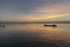 La Albufera (Francisco Esteve Herrero) Tags: albufera laalbufera valencia barca atardecer reflejos franciscoesteveherrero nikond5300 pacoesteveherrero 2017