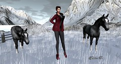 Winter Trace (Jessica Pearl D.) Tags: winter mountain catwa maitreya secondlife magic creature fantasy roleplay wintertrace snow city