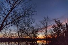 4177-2016-BR (elfer) Tags: paisaje puestasdesol bosques lagunas otoño rivasvaciamadrid madrid españa