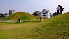 建設公司的造景 Construction company Landscaping (rightway20150101) Tags: taichung taiwan landscape 景觀