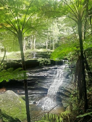Waterfall/Cascades at Sailors Bay Creek