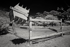 Vertically Challenged. (IR} (F. Neil S.) Tags: birdhouse fallen disrepair easternnorthcarolina marshallberg springafternoon bikeride sony nex6 blackandwhite fullspectrumconversion hoya r72 filter emount