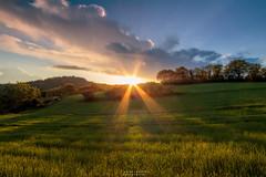 La giornata di Domenica (Danilo Agnaioli) Tags: primavera natura tramonto umbria italia