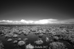 The Marshes of Kyance Cove (James Etchells) Tags: kyance cove national trust south west cornwall kernow marshes marsh water landscapes landscape long exposures exposure lee filters nikon sky clouds photography outdoors outdoor monochrome black white light dark coastal coast scale