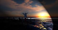 NonStop_By the Sea (Niki Wirefly) Tags: fae fairy fairey faerie male fantasy landscape sea beach dark secondlife wings niki sl