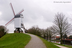 #molino #windmill #2016 #brujas #brugge #bruges #bélgica #belgium #canal #channel #agua #water #ciudad #city #viajar #travel #viaje #trip #paisaje #landscape #photography #photographer #picoftheday #sonystas #sonyimages #sonyalpha #sonyalpha350 #sonya350 (Manuela Aguadero) Tags: landscape trip brujas city sonystas 2016 water sonya350 sonyimages ciudad brugge bélgica viajar channel molino picoftheday belgium photography sonyalpha sonyalpha350 paisaje windmill photographer alpha350 agua bruges canal viaje travel