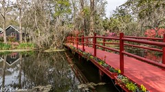 Cottage with a view (Ronda Hamm) Tags: wideangle landscape bridge southcarolina reflection canon red pond trees magnoliaplantationandgardens house canon7dii path 1585 water swamp flowers