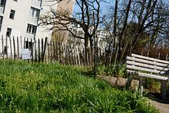 Beausite - Jardin partagé