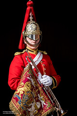 Female Trumpeter of the The Band of The Household Cavalry (Defence Images) Tags: woman female soldiers identifiable personnel whitegloves plumedhelmet tunic location householdcavalry bands hcmrd thehouseholdcavalrymountedregiment thehouseholdcavalry regiments army militarymusicians militarymusic london equipment clothing defence defense uk british military unitedkingdom gbr