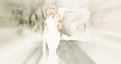Take an angel by the wing (♡ evie ☮) Tags: secondlife angel wings sia