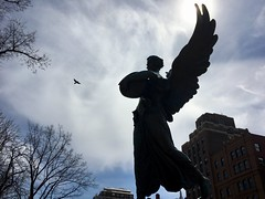 Boston - The Public Garden! - Chasing the Sun. (Polterguy30) Tags: flying fly silhouettes silhouette birds bird sunlight sun statues statue angels angel publicgarden massachusetts boston