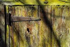Bisagra ecologica (Amataki) Tags: amataki visagra ecologica