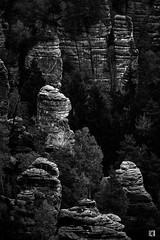 (lotl.axo) Tags: deutschland sachsen felsen bastei sächsischeschweiz schwarzweis schlucht natur reisefotografie elbsandsteingebirge germany bw blackandwhite bnw gorge monochrome nature ravine rocks sw travelphotography