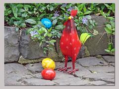 Wer legt denn jetzt die Ostereier? - Who lays the eggs now! (Jorbasa) Tags: happyeaster osterfest ostern easter eier egg hahn werlegtdieeier wholaystheeggs jorbasa hessen wetterau germany deutschland