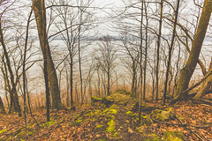 River Bluffs (Tony Webster) Tags: frontenac frontenacstatepark lakepepin minnesota mississippiriver earlyspring forest leaves spring statepark trees unitedstates us