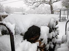 IMG_2810 (sjj62) Tags: s90 snow snowscape lith lakeinthehillsil winter winterscape