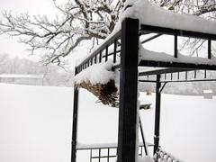 IMG_2806 (sjj62) Tags: s90 snow snowscape lith lakeinthehillsil winter winterscape