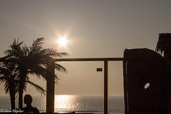 zon, zee strand in Wijk aan Zee (Edwin Hinfelaar) Tags: wijkaanzee