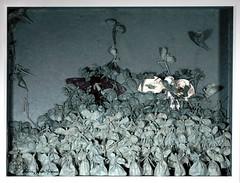 Zoon Logon Echon Complete (Yureiko) Tags: yureiko tessellation papierfalten papier art kunst origami paperfolding paper 折り紙 おりがみ shiborigami