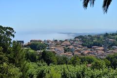 _DSC1679 (SLVA49) Tags: verano niebla cantabria comillas nikon df 2470mm