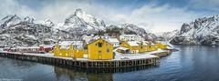 Nusfjord, Lofoten (OliPhil_997) Tags: islands lofoten norvege norway