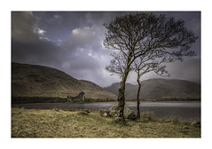 Residential (Lindi m) Tags: scotland kilchurncastle castle loch trees mountains lochewe ruins