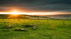 Sunburst (Scruddy) Tags: rollright stones cotswolds uk england sunset landscape sky nikon d810 2470 f11 green orange sunburst