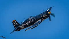 Class of '45 (lpd5358) Tags: sunnfun airshow florida lakeland klal lakelandlinderregionalairport airplane warbird f4u4 corsair vought koreanwarhero