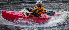 VeV 2017 #9 (GilBarib) Tags: vaguesenvillesvev québec gilbarib riii whitewater kayak canoes xt2 rivièrestcharles xt2sport fujifilm xf100400mmf4556rlmoiswr canot xf100400 fujix fujixsport
