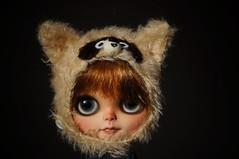 Raccoon girl wants to travel
