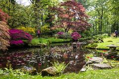 Japanse Tuin Clingendael 2014-02226 (Arie van Tilborg) Tags: japanesegarden denhaag thehague clingendael japansetuin clingendaelestate landgoedclingendael