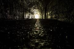 Seemühle (qitsuk) Tags: lost schweiz switzerland mine tunnel places mining rails stollen sanktgallen walensee walenstadt lostplaces seemühle lochezen