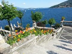Lago Maggiore  Isoal Bella Terrazze