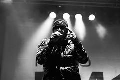 Samy Deluxe - Linzfest 2014 (Ella Kronberger) Tags: party music festival linz austria live kultur fm4 rap musik konzert orf donaulände junq linzfest fm4bühne junqat subtextat orffm4