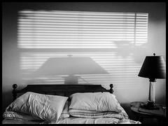 Bedroom Blinds (claudia_sullivan) Tags: phonar looking4light nationlooking4light phonarnation