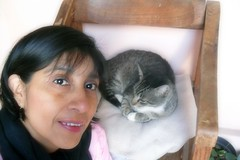 M + M (MaPeV) Tags: woman cats girl chats mujer women chat chica tabby kitty gatos gato neko katze morris marguerite gatti gattoni gattini mapev tabbyspoted bellolindoguapetn