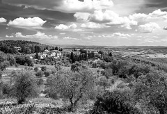 Like a Renaissance painting (Franck_Michel) Tags: bw cloud countryside florence nb tuscany firenze nuage toscane campagne