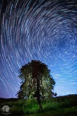 Rolling wheel (warmianaturalnie) Tags: sky tree nature night stars landscape trails poland startrails warmia