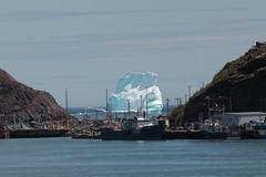 Iceberg Blocks Harbour (FudgeD) Tags: newfoundland stjohns iceberg touristphotoop