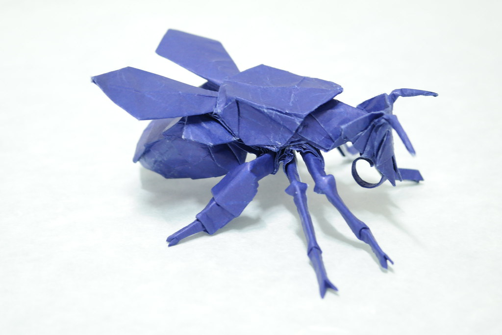 The Worlds Newest Photos Of Bee And Origami