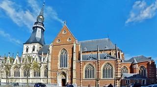 Sint-Quintinuskathedraal (24) Hasselt
