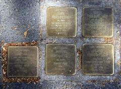 Stumbling-blocks (:Linda:) Tags: germany bavaria town memorial coburg five franconia jewish stolperstein stumblingblock annerubin emilforchheimer bertaforchheimer peterforchheimer franzforchheimer