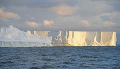 PEB_0273.jpg (PaulBalfe) Tags: antarctica iceburg rosssea